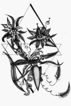 """Жени Цветкова, """"Цветя от градините на баба ми"""", детайл"""